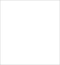 Pacsafe METROSAFE LS350 Anti-theft RFID safe backpack 30430123 Tweed