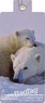 My bag tag Twin pack BTANI11 POLAR BEAR